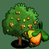 Cashew Tree Regalo Monedas que produce: 41 Se vende por: 40