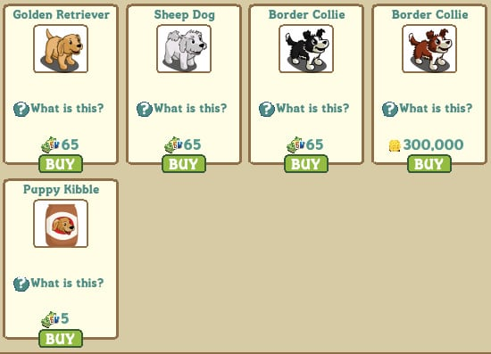 Golden Retriever, Sheep Dog, Border Collie (Farm Cash), Border Collie (Coins) y Puppy Kibble