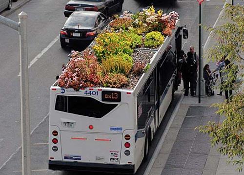 autobus ecologico con jardin