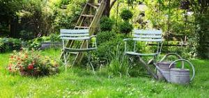 chaise dans jardin