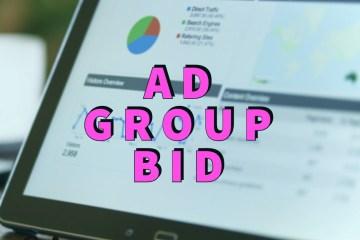 Ad Group Bid 1