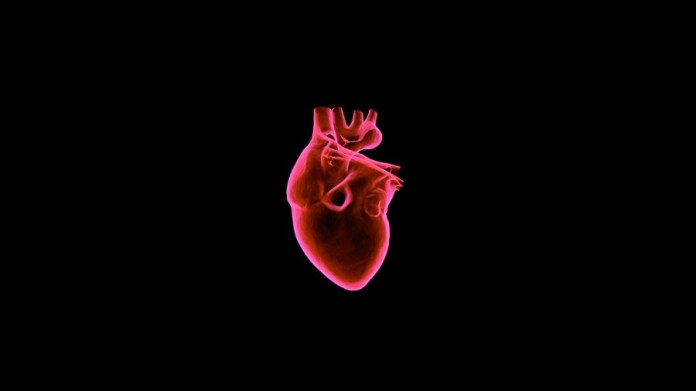 Using Artificial Intelligence in Cardiology
