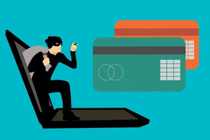 Keeping Credit Fraud at Bay