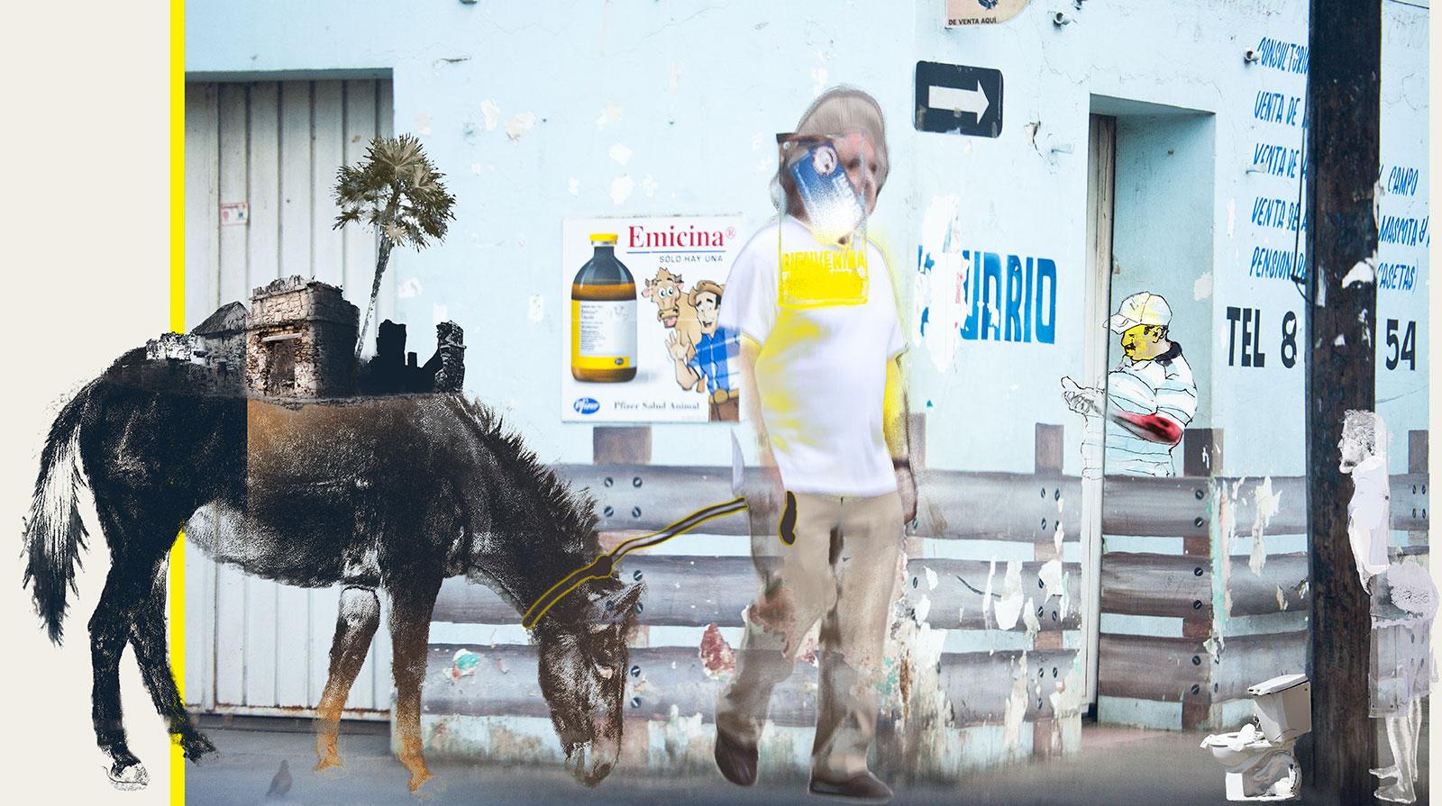 man walking donkey on street in Mexico
