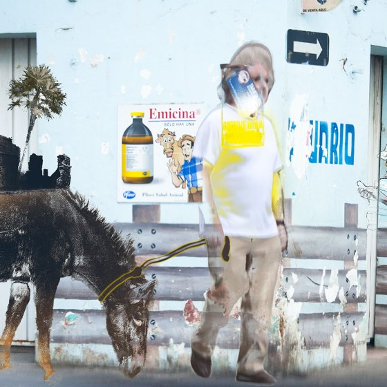 man walking donkey on street in Mexico