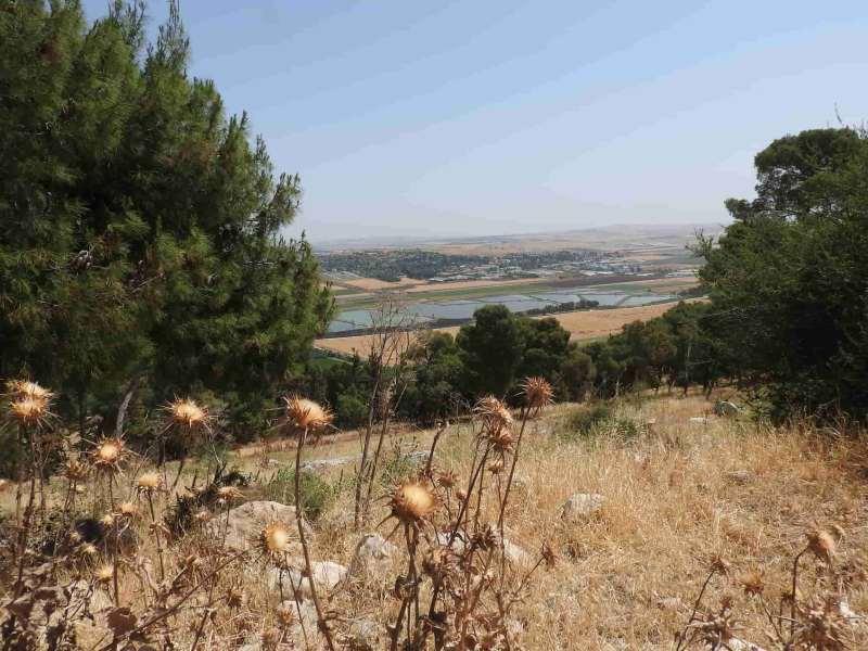 נוף מגבעת יהונתן בגלבוע