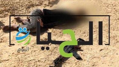 قتلى بسلاح الجيش المصري في سيناء (1)