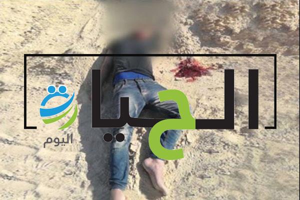 قتلى بسلاح الجيش المصري في سيناء (3)