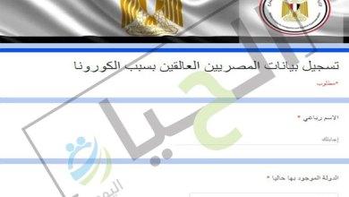 تسجيل بيانات المصريين في الخارج