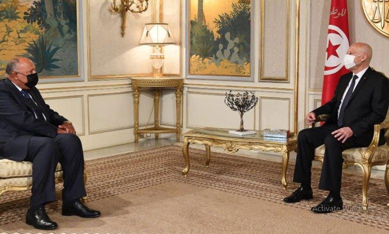وزير الخارجية المصري مع رئيس تونس