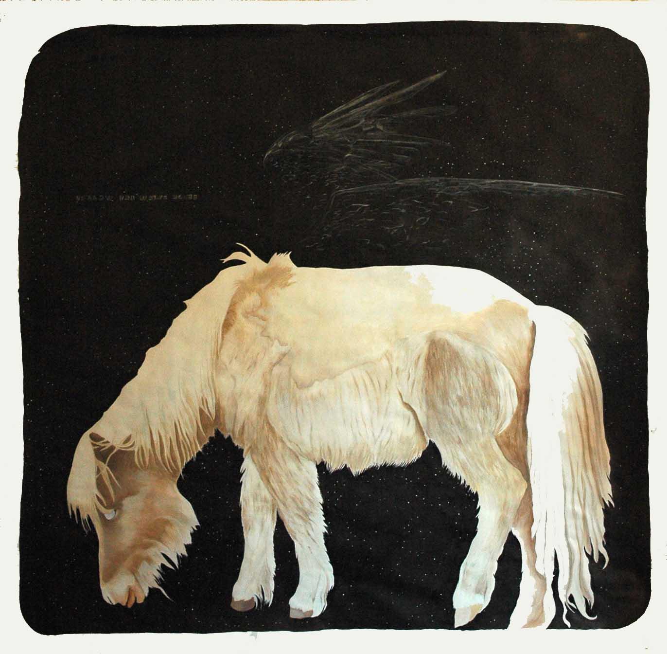 Follow_the_white_horse