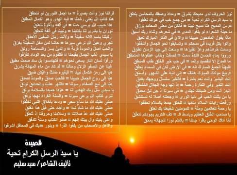 qseda (2)