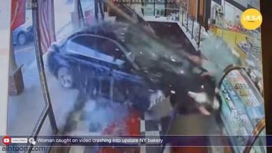 """شاهد: امرأة تتسبب في حادث بـ""""مخبز"""" - صحيفة هتون الدولية"""