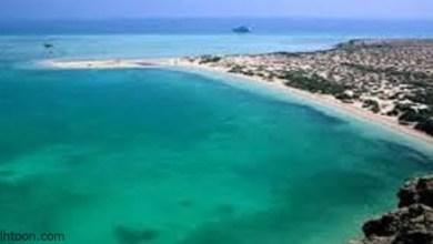 أجمل شواطئ المملكة ذات المناظر الخلابة -صحيفة هتون الدولية