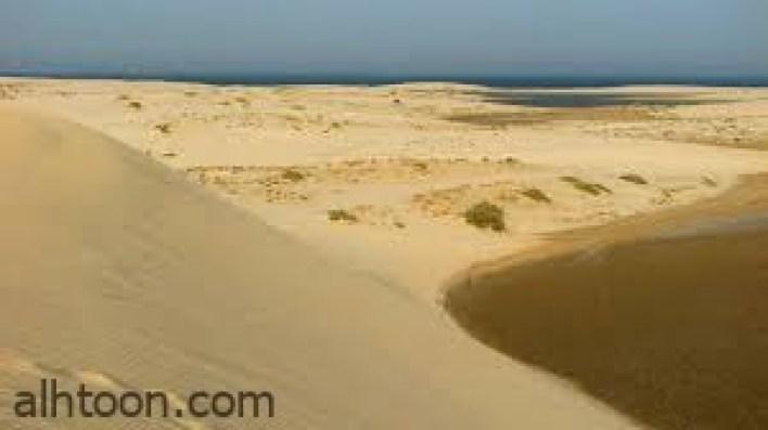 محمية خور العديد في قطر-صحيفة هتون الدولية