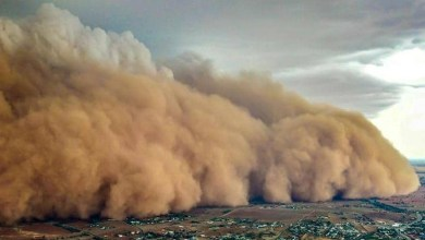 شاهد: عاصفة قوية داخل مجمع سكني بأمريكا - مشاهد المملكة