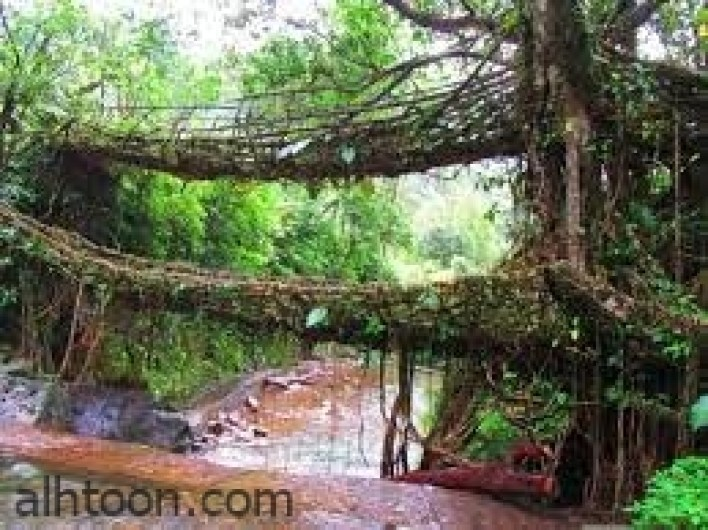 اشهر عجائب الهند الطبيعة -صحيفة هتون الدولية