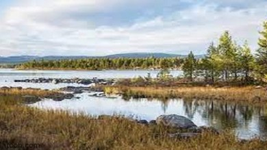 أجمل الحدائق الوطنية في النرويج -صحيفة هتون الدولية-