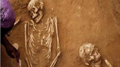 شاهد: العثور على عظام بشرية بمنزل سفاح - صحيفة هتون الدولية