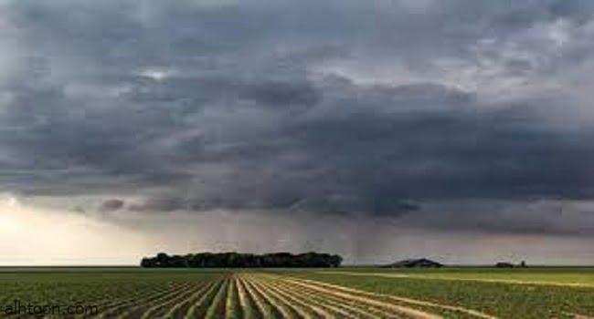 كيف يتكون المطر ؟ -صحيفة هتون الدولية