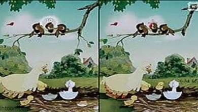 لعبة اختلافات الصورتين للاذكياء -صحيفة هتون الدولية