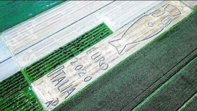"""مزارع يحتفل على طريقته بعد فوز إيطاليا بـ""""يورو 2020"""" - صحيفة هتون الدولية"""