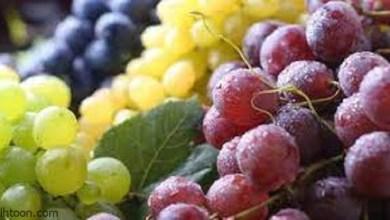 تعرف على فوائد العنب للصحة -صحيفة هتون الدولية