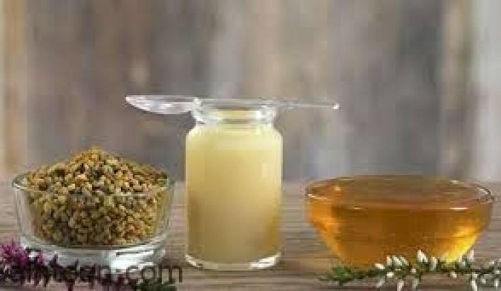 فوائد متعددة لغذاء ملكات النحل -صحيفة هتون الدولية