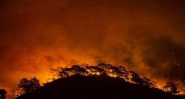 شاهد: تدمير بلدة تاريخية بكاليفورنيا بسبب النيران - صحيفة هتون الدولية