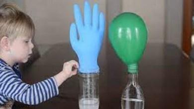 انشطة علمية مفيدة للأطفال -صحيفة هتون الدولية