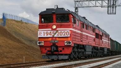 شاهد: إوز يعطل حركة قطار - صحيفة هتون الدولية