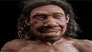 إعادة بناء وجه إنسان «نياندرتال» عاش ومات قبل 70 ألف عام -صحيفة هتون الدولية