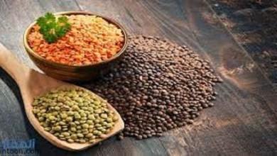 فوائد العدس الصحية وقيمة الغذائية -صحيفة هتون الدولية-