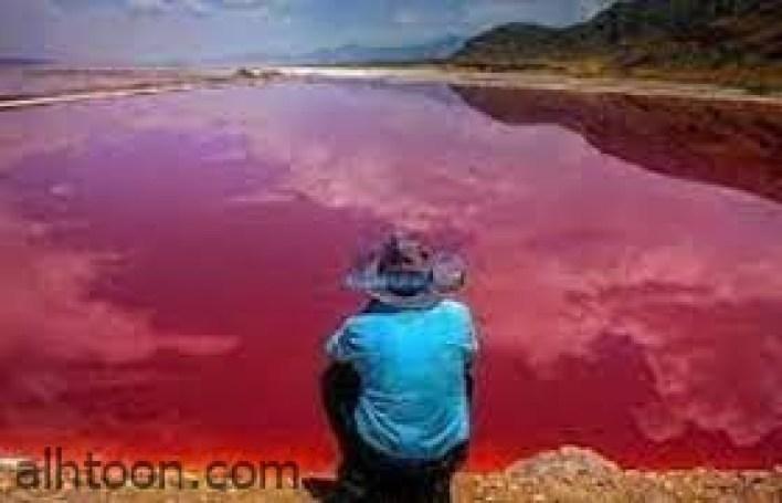 """الكشف عن سبب ظهور """"المياه الحمراء""""  في البحر الميت -صحيفة هتون الدولية"""