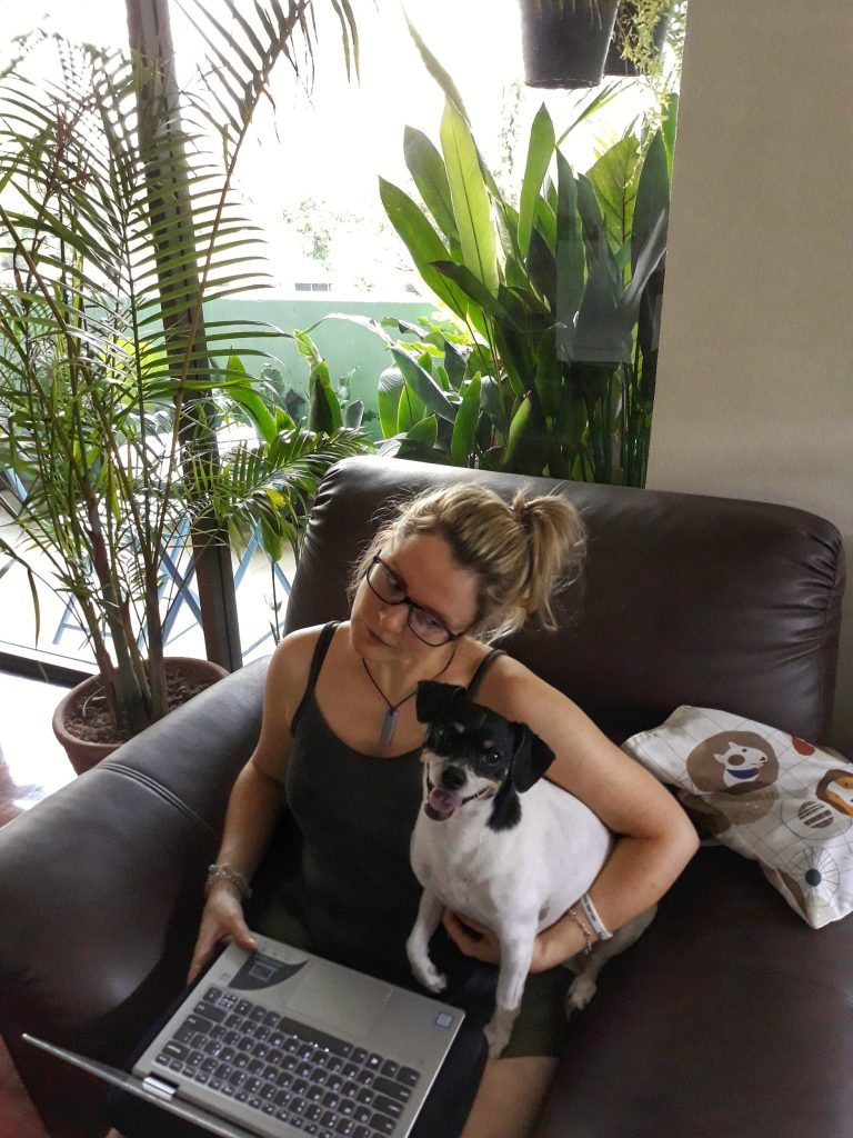 How to become a House sitter House sitting jobs