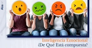 Inteligencia Emocional ¿De Qué Está compuesta?