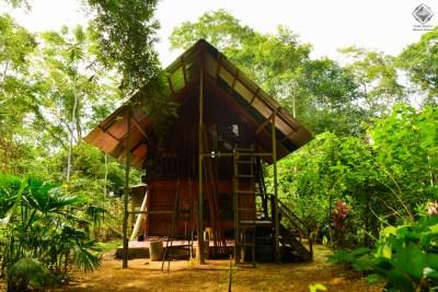 Zone 1 at Kuka Ethnobotanical Garden