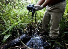 Oil_spill_in_jungle_2