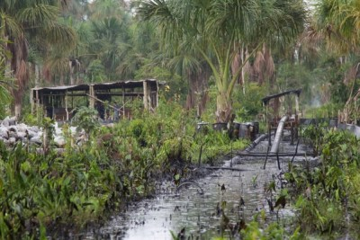 Oil Spill in Pacaya Samiria National Reserve