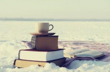 livres-a-lire-sous-la-neige