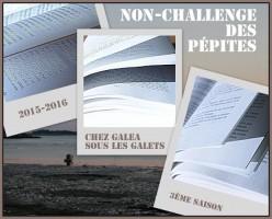 logo-non challenge 2015-2016 - copie