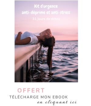 alice et shiva ebook offert kit urgence anti deprime anti stress programme 31 jours detox bien etre