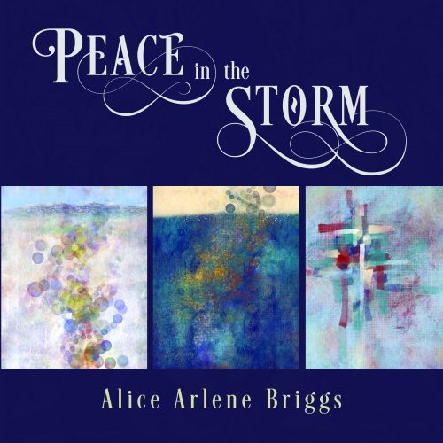 Peace in the Storm art show book