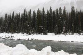 Snow in between - Alberta