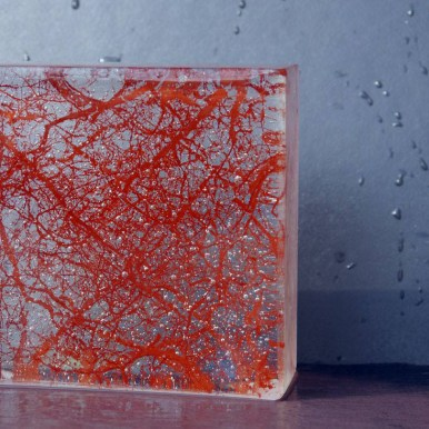 Synapse fused glass