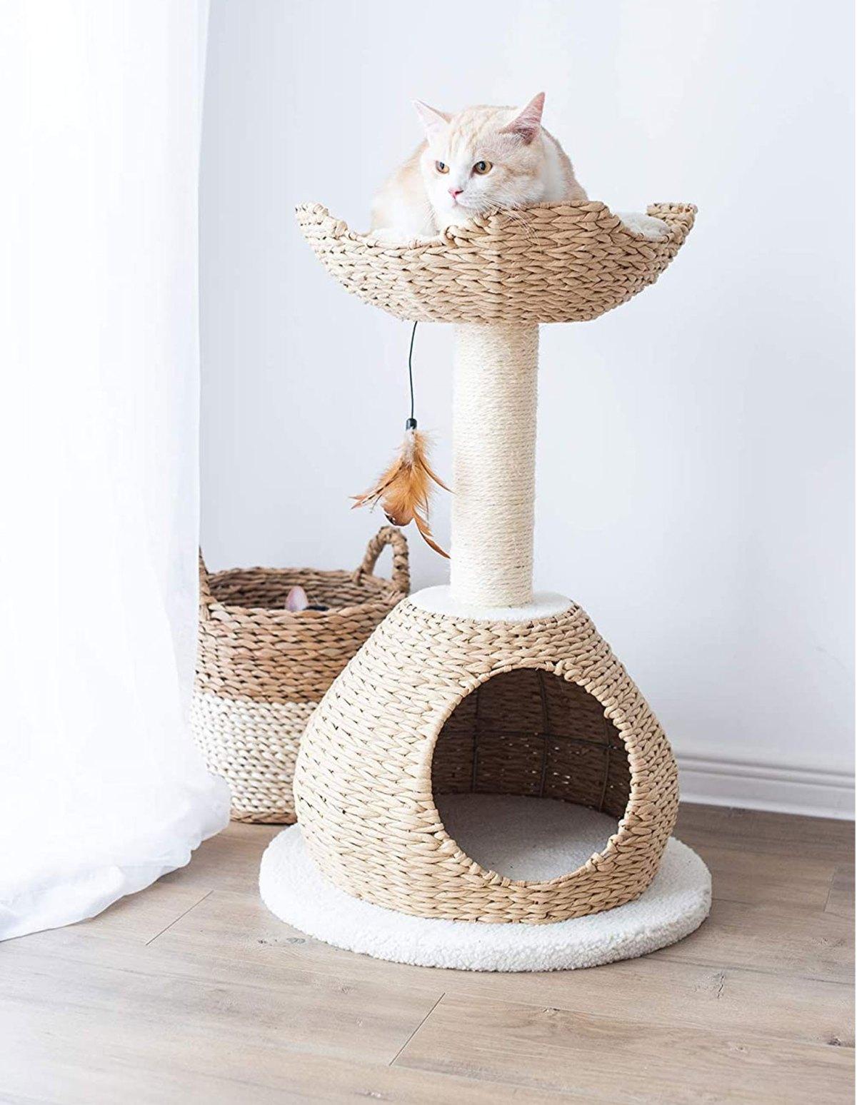 cat bed tree