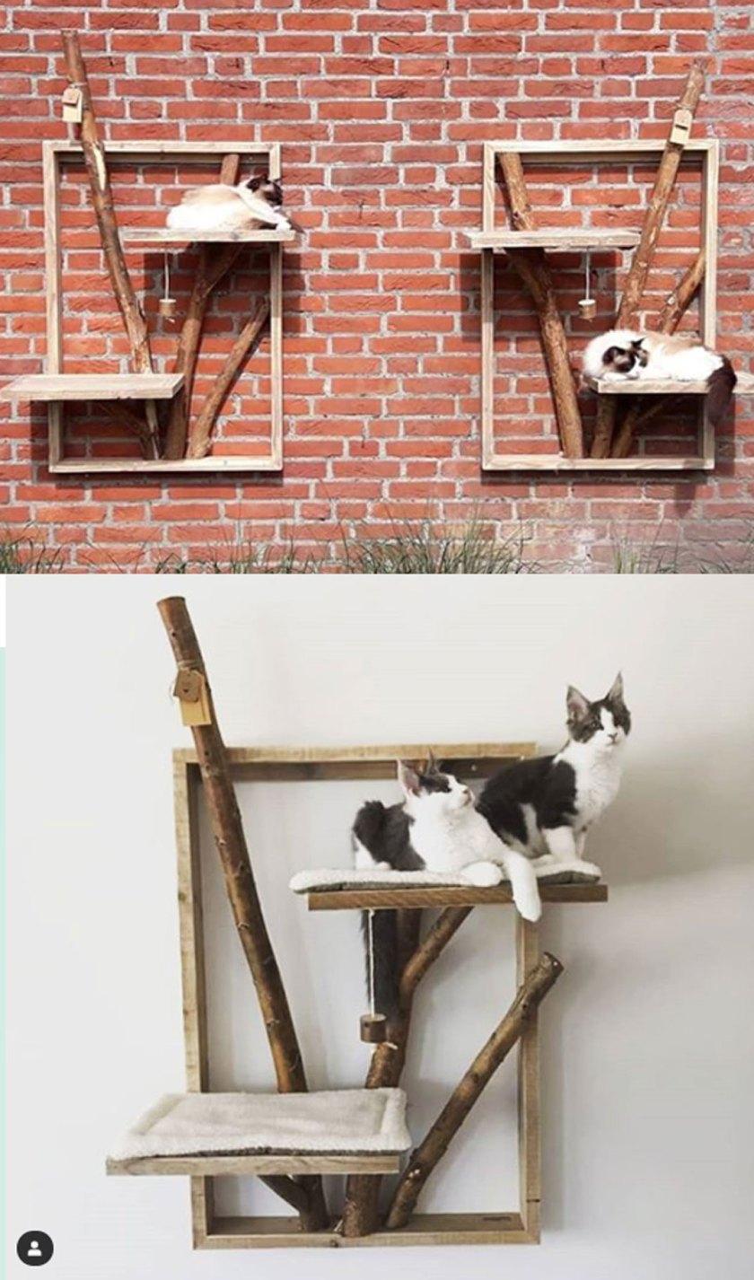 unique cat tree house