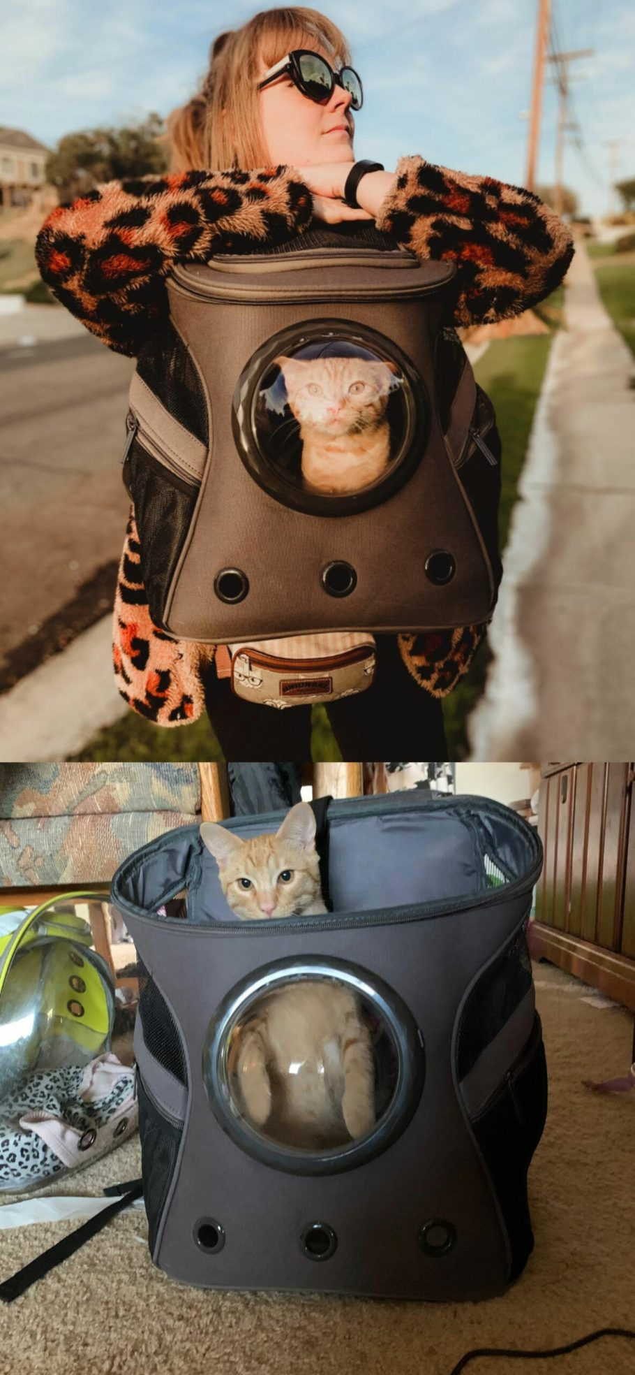 cat carrier bag