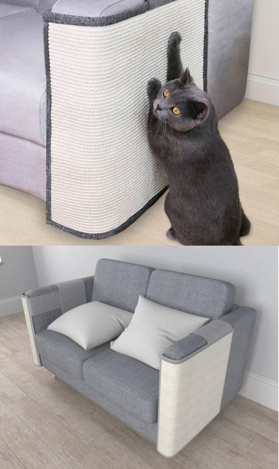 cat scratching post best