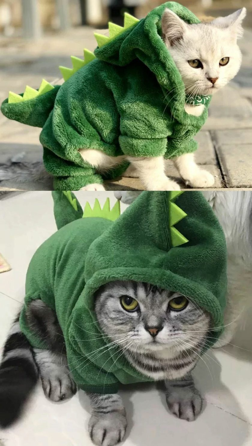 cute cat christmas outfits